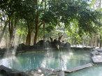 森林温泉でリラックス