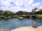 ハワイ島を遊び尽くす「フォーシーズンズ」の旅