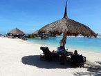 おいしいフィリピンへ! マニラ&セブのグルメ旅
