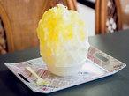 天然氷とフルーツの名産地 栃木県の極上かき氷BEST6