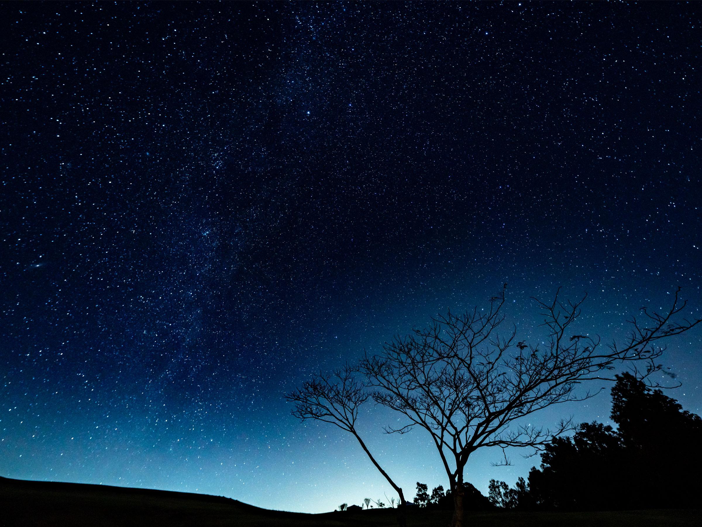 【三重県】夏の絶景・風物詩5選 夏の夜空に広がる幻想的な天の川
