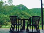 おいでよ! 緑の森カフェ in 沖縄