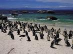 新しい風が吹く南アフリカへ