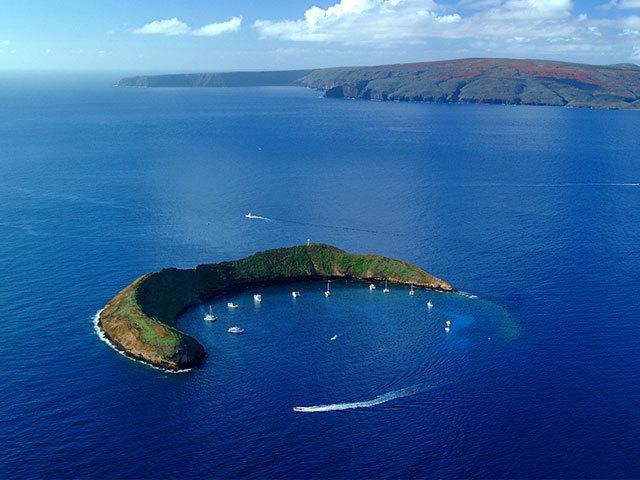 熱帯魚と泳ぎ究極のパインを味わう <br />マウイ島で体験すべきツアー3選