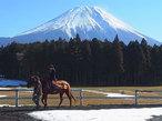 静岡県は東側が面白い!